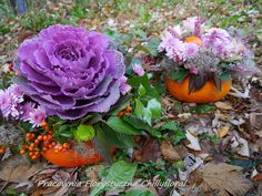 Pracownia Florystyczna Chillyfloral Pumpkin Decorations, Cabbage, Vegetables, Cabbages, Vegetable Recipes, Brussels Sprouts, Veggies, Pumpkin Decorating, Sprouts