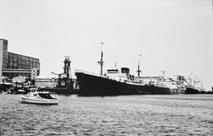 129240PD: Grain loader and steamship, Geraldton Harbour, ca 1954 http://encore.slwa.wa.gov.au/iii/encore/record/C__Rb3915154?lang=eng
