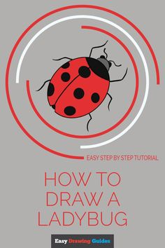 Copic Drawings, Bird Drawings, Easy Drawings, Animal Drawings, Flower Drawing Tutorials, Drawing Tutorials For Kids, Drawing For Kids, Daily Drawing, Drawing Ideas