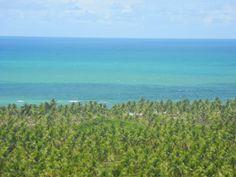 Vista do forte, minha praia preferida Gunga Maceio