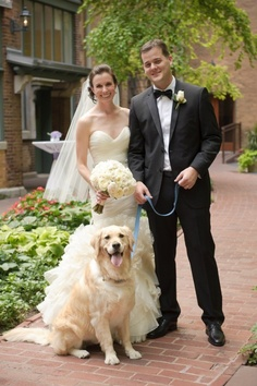 On the actual wedding dog, looking for a photo with the ring bearer - our dog, Honey.