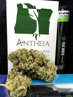 Much love to my fam over at @antheiagrantspass for always hooking up Ya boy big time...  Great staff and great products     Do I need anything for the road you say? Well since you ask...  Some stanky dank Gorilla Glue #4 and some Girl Scout Cookies from @truenorthx which I've been looking forward to trying   #ommp #dank #gorillaglue #kush #wakenbake #Oregon #mmj #weed #maryjane #dabber #loud #high #stoned #stoner #danksgiving