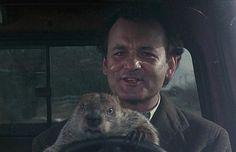 "Tim Minchin to follow-up ""Matilda"" with ""Groundhog Day"""