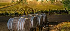 Farmhouse Inn in Forestville, California / Sunset Magazine Travel Awards 2015/ Best Wine Country Resort.