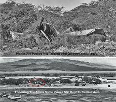 Anniversary of December 1941 - Ewa Battlefield still has many undocumented historic sites December 7 1941, Pearl Harbor Attack, Tree Line, Still Have, Historical Sites, Anniversary