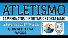 Campeonato Distrital de Corta-mato Curto Aveiro 2017