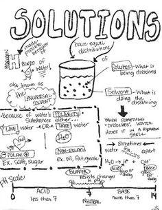 Mendel- Punnet Squares Genetics Sketch Notes Doodle Notes
