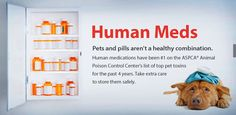 Human Meds Can Harm Your #Pet #petsafety