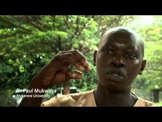 Climate Change - Remapping Uganda's Future (full length, 12mins) - YouTube