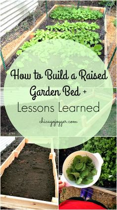 How to Build a Raised Garden Bed + Lessons Learned | chicagojogger.com