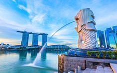 Merlion Singapore, Travel Around The World, Around The Worlds, Places To Travel, Travel Destinations, Singapore Travel, Travel Brochure, Islamic Architecture, Travel Goals