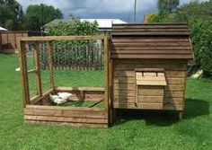 6 things to consider before Before U Start a Chicken house