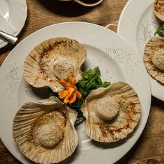 Jacobsmuscheln nach italienischem Rezept im Wrangelkiez in Berlin Kreuzberg im Restaurant Der Goldene Hahn mit täglich wechselnden italienischen Gerichten