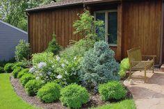 Low-Maintenance Shrubs for Backyard Pool Landscaping, Backyard Flowers Beds, Beautiful Backyards, Landscaping Around House, Garden Shrubs, Low Maintenance Garden, Landscaping With Rocks, Shrubs, Landscaping Shrubs