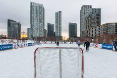 Toronto Views's albums Visit Toronto, Downtown Toronto, Toronto Winter, Outdoor Skating, Ice Rink, Winter Snow, Ice Skating, Cn Tower, Memoirs