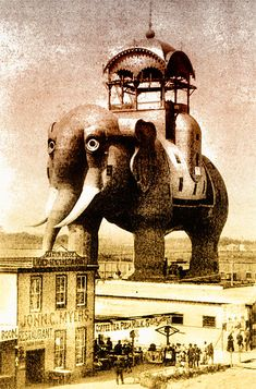 "the ""Coney's Colossus"" Elephant Hotel which was located on the site that would later become Luna Park. This tin & wood frame building was built by James Lafferty in 1884. The elephant stood 150 ft. tall and had 34 rooms, including a cigar stand in a rear leg. The structure burned in 1896"
