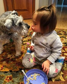 Sharing Cheerios and kisses with my schnauzer