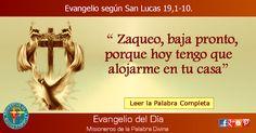 MISIONEROS DE LA PALABRA DIVINA: EVANGELIO - SAN LUCAS 19,1-10