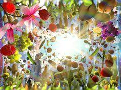 Arno Coenen a créé la plus grande œuvre d'art du monde | The Creators Project
