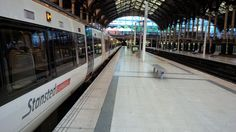 St Pancras International Station to London Stansted Airport