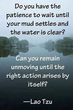 It's not easy to let the mud settle, the right action arise, but it always works out best that way. - Abba