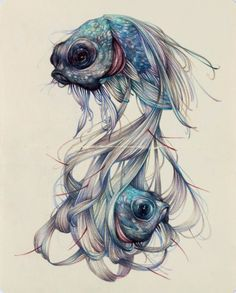 Marco Mazzoni, The Hairy Fish