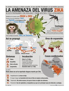 Drug actions inhibition of protein synthesis medicinescience public health virus del zika amrica latina solar spanish vocabulary perms baccalaureate be better students fandeluxe Choice Image