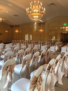 Champagne Satin Sashes on Ivory Spandex Covers in the Congress Ballroom, Hilton President. Champagne Wedding Decorations, Wedding Stage Decorations, Wedding Chair Sashes, Wedding Chairs, Wedding Chair Covers, Wedding Tables, Princesse Party, Banquet Chair Covers, Spandex Chair Covers