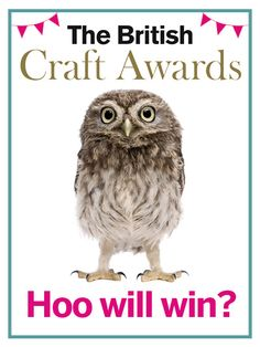 Don't forget that voting's still open for the fabulous British Craft Awards 2016!! Have you cast your votes yet? If not, why not?!!!! Make sure your faves in the stitching world get the credit they deserve. Voting'll be done in a flash so click now, www.britishcraftawards.com & you'll be entered to win a subscription to each of our stitching magazines... not just The World of Cross Stitching but Cross Stitch Crazy & Cross Stitch Gold too, (t&cs apply). www.britishcraftawards.com
