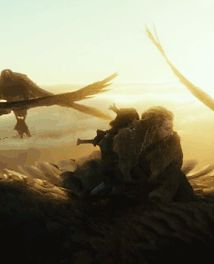 I'm not surprised that Fili and Kili are on the same eagle. :)