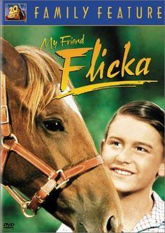 My Friend Flicka DVD ~ Roddy McDowall, http://www.amazon.com/dp/B00007JMDZ/ref=cm_sw_r_pi_dp_UUO-rb0BMJMCS