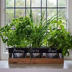Indoor Herb Garden Kit - by Viridescent - Wooden Windowsill Planter Box for the Kitchen. Includes All You Need to Grow Your Own Herbs. Personalise with Chalk Provided. Herb Garden Planter, Herb Garden Kit, Herb Garden In Kitchen, Herb Garden Design, Kitchen Herbs, Herb Planters, Easy Garden, Garden Boxes, Garden Ideas