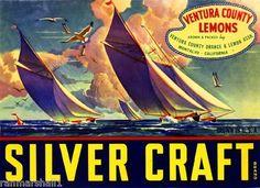 Montalvo Ventura County Silver Craft Lemon Citrus Fruit Crate Label Art Print | eBay