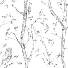 Nome Gray Woods Peel And Stick Wallpaper bookshelf back