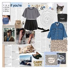 """""""deeply in love with cats ♡"""" by embrxce ❤ liked on Polyvore featuring Piet Hein, Sole Society, H&M, McGinn, T By Alexander Wang, Chanel, Monki, Charlotte Olympia, Topshop and Boodles"""
