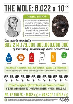 Avogadro & The Mole Today, 23rd October, is Mole Day – which might put you…