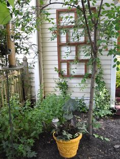 Almost-Free Outdoor Updates on HGTV - This homeowner's path to the backyard wound past a blank side wall of the house. To camouflage its awkwardness, he hung a simple trellis and a birdfeeder, and thereby created an instant garden nook