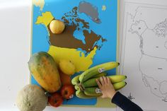 North America -- hands-on lessons with a preschooler -- a Montessori study on the continent