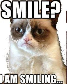 http://www.grumpy-cat.de