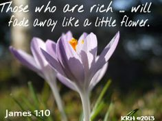James 1:10 Book Of James, James 1, Bible Verses, Plants, Scripture Verses, Plant, Bible Scripture Quotes, Bible Scriptures, Scriptures