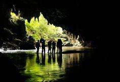 O PETAR (Parque Estadual Turístico do Alto Ribeira) é considerado uma das Unidades de Conservação mais importantes do mundo. Abriga a maior fração de Mata Atlântica preservada do Brasil e mais de 300 cavernas. É considerado hoje um patrimônio da humanidade, reconhecido pela UNESCO. O parque está localizado no extremo sul do Estado de SP, entre as cidades de Iporanga e Apiaí. - Brasil
