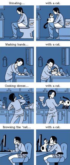 Aaaaah la vita con i gatti è dura ,ma sono e rimarranno sempre le nostre piccole palline di pelo morbidose pucci pucci