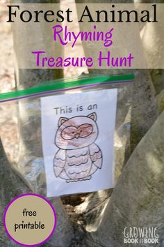 Get ready for a lively gross motor rhyming treasure hunt full of forest animals. Includes a free printable of animal cards and treasure hunt clues. Preschool Literacy, Preschool Themes, Literacy Activities, Activities For Kids, Preschool Plans, Preschool Crafts, Outdoor Activities, Kindergarten, Animal Activities