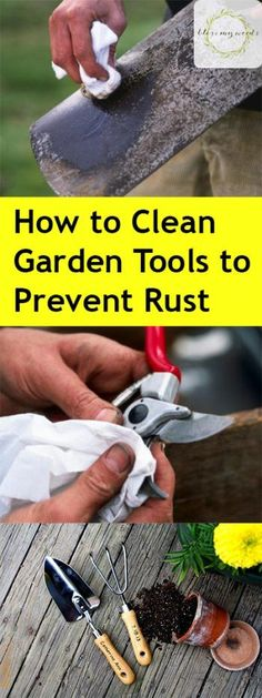 How to Clean Garden Tools, Easy Ways to Clean Gardening Tools, How to Sharpen Gardening Tools, Caring for Garden Tools, Simple Ways to Care for Garden Tools, Life Hacks, Gardening, Gardening Tips and Tricks, Popular Pin