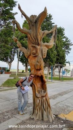 Santos / Ushuaia Escultura em arvores Puerto Madryn Março 2016 #brasileirosemushuaia #brasileirosporai #argentina #patagonia #viagemdecarro