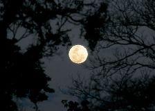 Atrativos em Foz do Iguaçu - Passeio na lua cheia