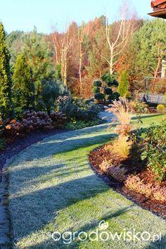 Igiełkowy ogródeczek ogród zimą Palos Park, Stepping Stones, Country Roads, Outdoor Decor, Plants, Gardening, Inspiration, Biblical Inspiration, Lawn And Garden