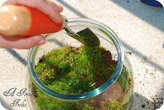 土台ができたら、全体を覆うように苔を敷き詰めます。それが終わったら、お好みでフィギュア等を置いてデコレーション。最後に霧吹きで苔をしっとりと湿らせれば完成です!完成したら、直射日光の当たらない、明るい場所に置きましょう。