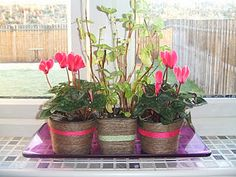 Decorate your own flower pots