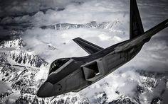 F-22 Raptor #military aviation